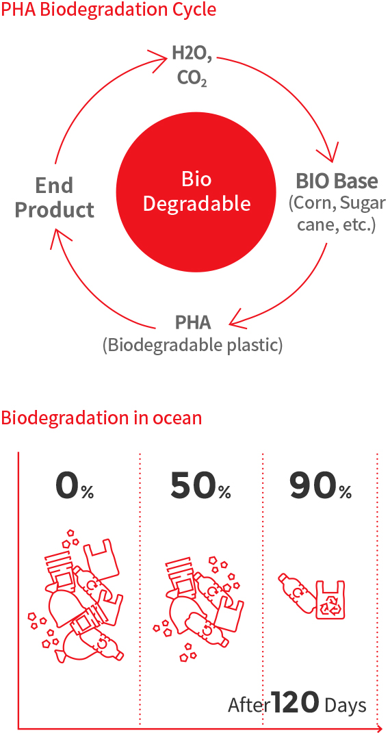 PHA Biodegradation Cycle [Bio Degradable : H2O, CO2 > BIO Base (Corn, Sugar cane, etc.) > PHA (Biodegradable plastic) > End Product, Bio degradation in ocean After 120 Days