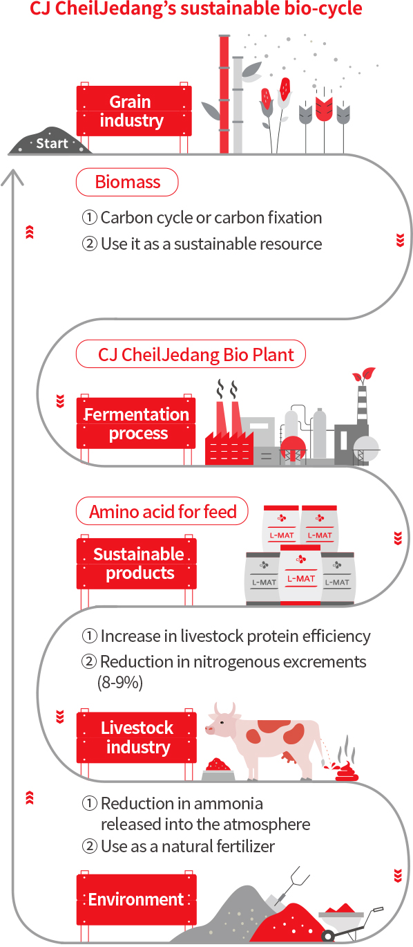 CJ CheilJedang's sustainable bio-cycle [Start > Grain industry Biomass '1. Carbon cycle or carbon fixation, 2. Use it as a sustainable resource, 3. Organic fertilizer'] > CJ CheilJedang Bio Plant (Fermentation method) > Amino acid for feed (Sustainable products) > Sustainable Environment products '1. Increase in livestock protein efficiency, 2. Reduction in nitrogenous excrements (8-9%) > Environment '1. Reduction in ammonia released into the atmosphere , 2. Use as a natural fertilizer > repeat